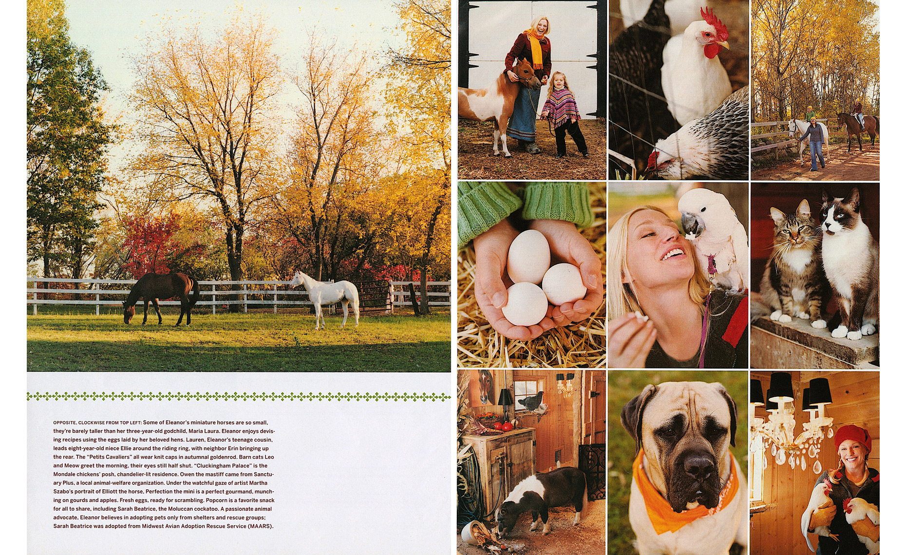 Country-Living-02